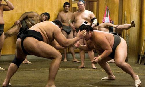 相撲手訓練體驗_600x400