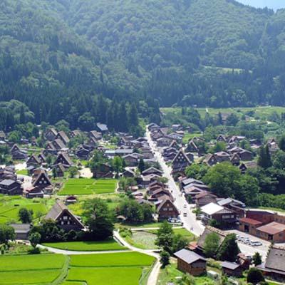 11435014-世界文化遺產白川鄉-飛驒高山一日遊